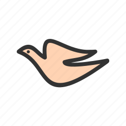 animal, birds, crow, dove, fly, pet, sky icon