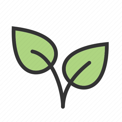ecology, garden, grow, leaf, leaves, nature, plants icon