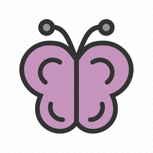 animal, butterfly, flowers, fly, garden, insect, nature icon