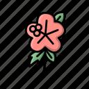 flower, flowers, hawaii, hibiscus