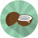 caribbean, coconut, fruit, island, sea, summer, tree icon