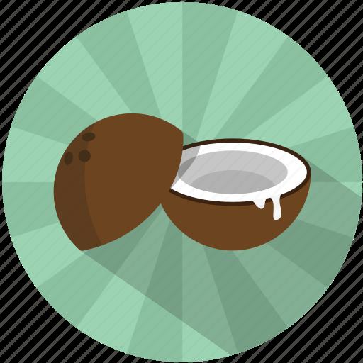 caribbean, coconut, fruit, island, sea, summer, tree icon