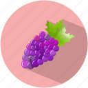 dessert, food, grapes, purple, tasty, vegetable, wine icon