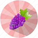 dessert, food, fruit, grapes, summer, tasty, wine icon