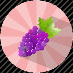 dessert, food, fruit, grapes, summer, tasty, wine icon
