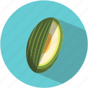 food, fresh, fruit, green melon, melon, summer, vegetable icon