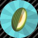 fruit, melon, pips, resfreshing, summer, tasty, vegetable
