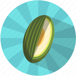 fruit, melon, pips, resfreshing, summer, tasty, vegetable icon