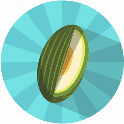 Fruit, melon, pips, resfreshing, summer, tasty, vegetable icon - Download on Iconfinder
