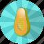 caribbean, food, fruit, papaya, refreshing, summer, vegetable icon