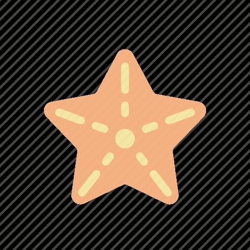 animal, ocean, sea, star icon