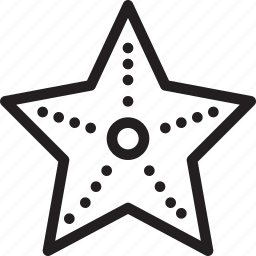 christmas, holiday, starfish, vacation, winter icon