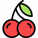 cherry, christmas, holiday, holidays, summer, vacation, winter icon