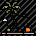 beach, sea, summer, tropical, palm