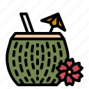 coconut, drinking, alcohol, cocktail, drinks