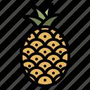 pineapple, fruit, food, healthy, natural