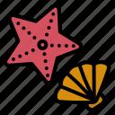 starfish, shell, seashell, beach, sea