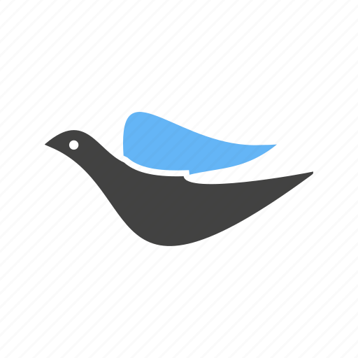 Animal, birds, crow, dove, fly, pet, sky icon - Download on Iconfinder