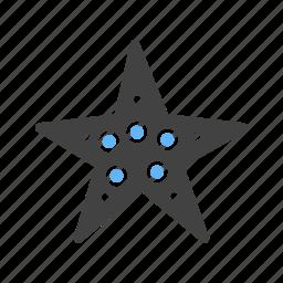 animals, beach, coral, fish, ocean, sea, star fish icon
