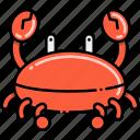 beach, crab, sand