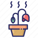 dying, flower, hot, plant, season, summer, weather icon