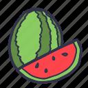 fruit, summer, sweet, water melon, watermelon icon