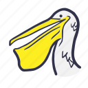 animal, beach, bird, holiday, pelican, summer, wild icon