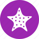 fish, sea fish, star, star fish icon