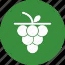fruit, grape, grapes, wine