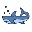 animal, aquarium, beach, sea, shark, summer, vacation icon