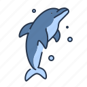 animal, aquarium, beach, dolphin, mamal, sea, summer icon