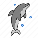 animal, beach, dolphin, sea, summer icon
