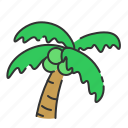 beach, coconut, summer, tree, vacation icon