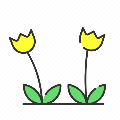 flower, plant, seed, summer, sun flower icon