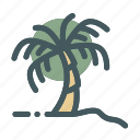 beach, coconut, plant, summer, tree