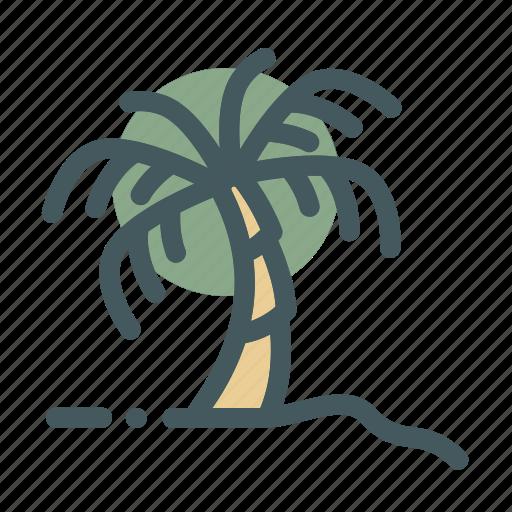 beach, coconut, plant, summer, tree icon