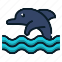 animal, dolphin, fish, ocean, sea, tourism, travel icon