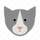 animal, cat, face, kitten, kitty, pet, tabby icon