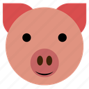 cute, hog, pig, finance, face, happy, piggy