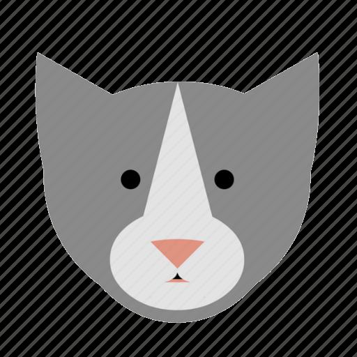 animal, cat, face, kitten, kitty, pet, tabby icon