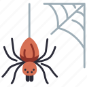 halloween, spider, web, spiderweb, scary, nature, forest icon