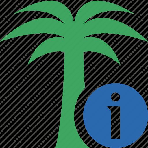 information, palmtree, travel, tree, tropical, vacation icon
