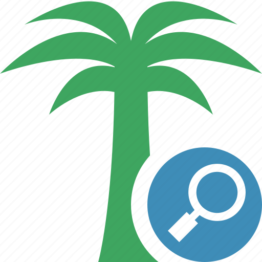 palmtree, search, travel, tree, tropical, vacation icon