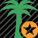 palmtree, star, travel, tree, tropical, vacation icon
