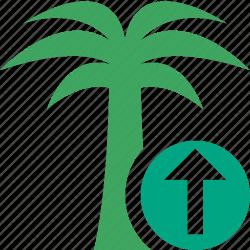 palmtree, travel, tree, tropical, upload, vacation icon
