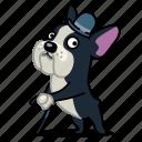 bulldog, dog, fancy, french, gentlemen, pet, smart icon