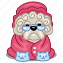 dog, grandma, granny, lapdog, old, pet icon