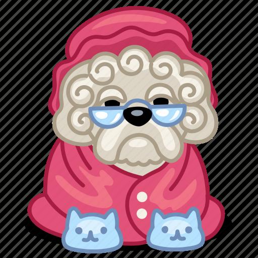 dog, grandma, granny, lapdog, old, pet icon