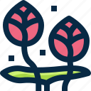 blossom, floral, flower, garden, lotus, plant, thailand icon