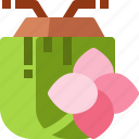 coconut, drink, flower, fruit, plumeria, thailand, tropical icon